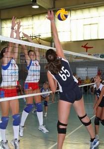 perbacco volley