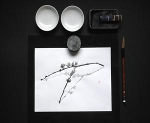 immagine disegno
