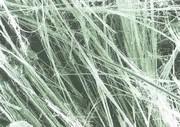 immagine fibre di amianto