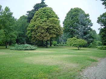 Giardini della città