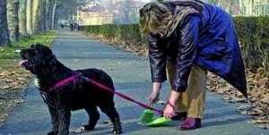 cane con donna