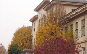 foto ospedale santo spirito