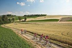 veduta colline monferrato